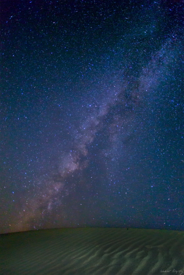 Desert Stars